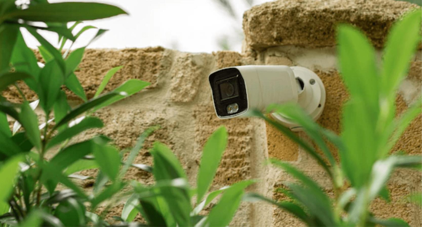 https://www.solavtec.com/wp-content/uploads/2015/12/campo_futbol.png